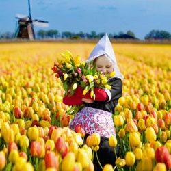 Verzekering voor kort verblijf in Nederland
